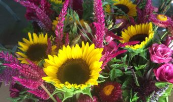 Pawtuxet Village Farmer's Market – August 6th