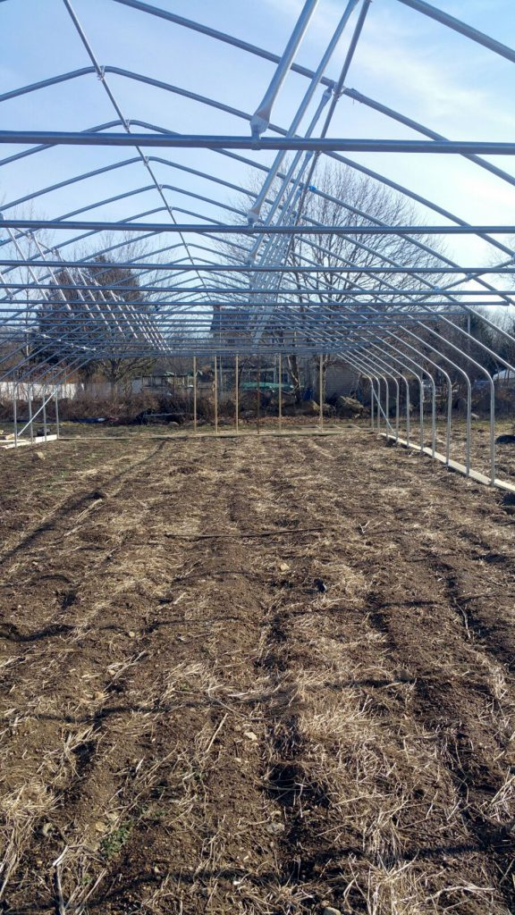 new high tunnel | Blue Skys Farm - local food - Cranston, RI