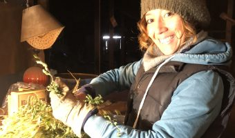 Our friend Cindy processing lemon verbena for Sanctuary Herbs